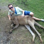 Bucket List: Play With Kangaroos
