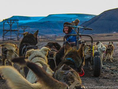 Dog Sledge - Svalbard - Bucket List