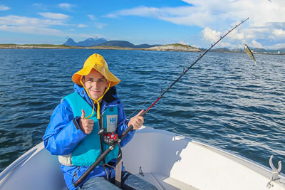 Fish in northern Norway - Bucket List