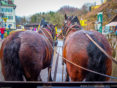 Horse Drawn Carriage - Bucket List