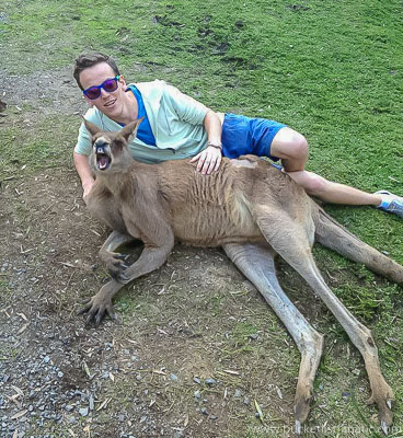 Kangaroo - Bucket List