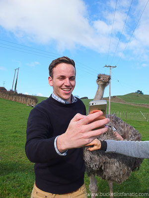 Ride an Ostrich - Bucket List